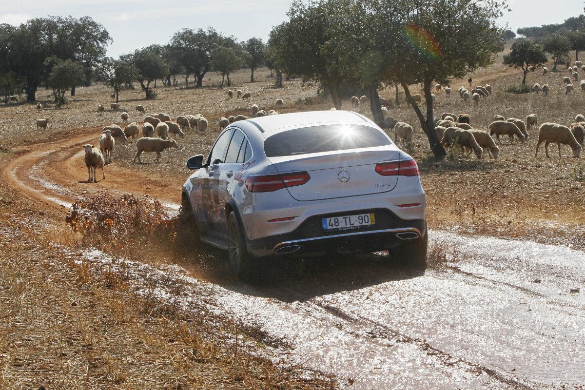 Mercedes na pedra